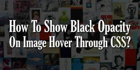 How To Show Black Opacity On Image Hover Through CSS? | EXEIdeas | Scoop.it