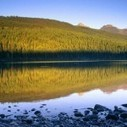 5 Best Campgrounds of Glacier National Park | Camping Activities | Scoop.it