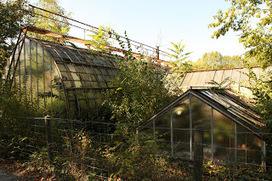 Photo day book: Jardin d'agronomie tropicale | veillaux environnement | Scoop.it