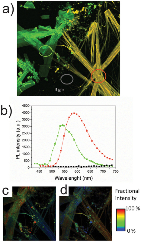A time-temperature integrator based on fluorescent and polymorphic compounds : Scientific Reports : Nature Publishing Group   Other World   Scoop.it