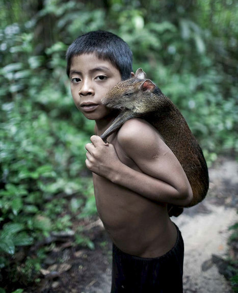 Rare Photos Of Amazonian Tribe That Breastfeeds Squirrels And Other Animals | Sociological Imagination | Scoop.it