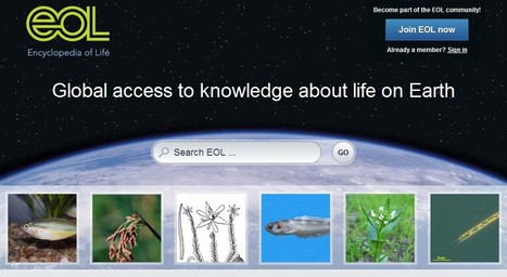 Encyclopedia of Life - Animals - Plants - Pictures & Information | 21st Century Tools for Teaching-People and Learners | Scoop.it