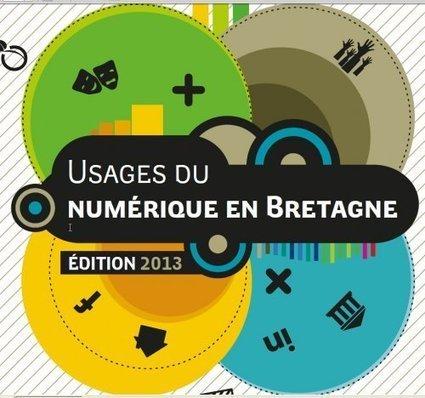 Usages du numérique en Bretagne - Édition 2013 | Libertés Numériques | Scoop.it