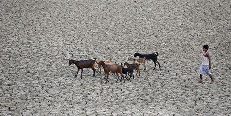 La raréfaction des ressources en eau menace la croissance | Politiques environnementales | Scoop.it