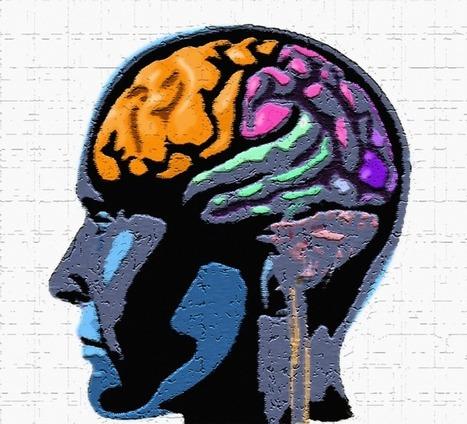 Comment chasser les tendances négatives de votre cerveau | Webmarketing et Réseaux sociaux | Scoop.it