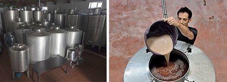 Le levurage, ou comment faciliter la fermentation | Oenotourisme en Entre-deux-Mers | Scoop.it