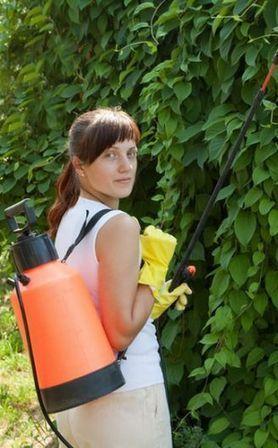 Fiches de jardinage bio: les purins. | Shabba's Yard | Scoop.it