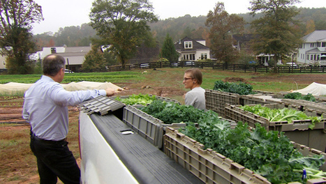 ​Home grown: Moving next to the farm | Vertical Farm - Food Factory | Scoop.it