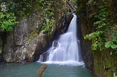 Hike to the Seven Falls of Mambukal Resort | Pinoy Travel Bloggers Journal | Scoop.it