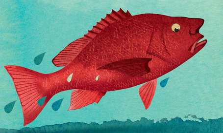 Fish 'Smell' Danger, and Perhaps We Do Too | Interesting science | Scoop.it