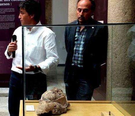 La falange de un homínido único en la Península Ibérica puede ... - eldiario.es | historian: science and earth | Scoop.it