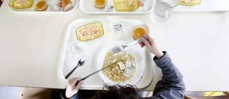 Des vers dans les choux-fleurs des cantines scolaires à Marseille - Le Point | La revue de presse des élèves de 2nde - semaine A | Scoop.it