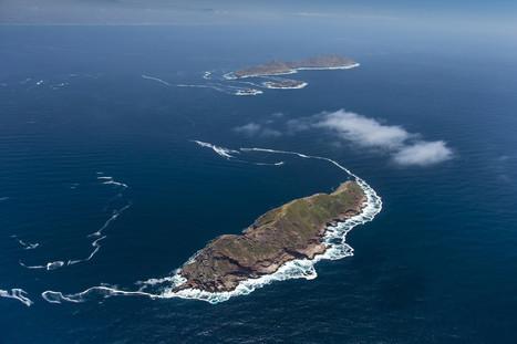 Mexico protects islands off Baja California's Pacific Coast   Baja California   Scoop.it