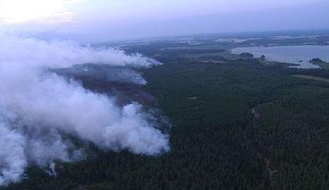 La Suède est victime des pires feux de forêt de son histoire | Filière bois : Filière d'avenir | Scoop.it