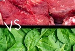 Protéines animales vs protéines végétales : le match santé | E-santé et médicaments en ligne | Scoop.it