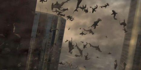 Sharks + tornadoes = Sharknado in new trailer for Tara Reid Syfy ... | Shark Attacks | Scoop.it