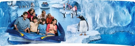 SeaWorld Orlando's Behind the Freeze--Puck's Antartica | Chris' Regional Geography | Scoop.it
