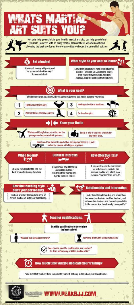 Whats Martial Art Suits You? | Peak Bjj | Scoop.it