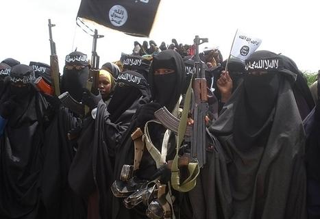 U.N. Declares War on al-Shabab   Africa   Scoop.it