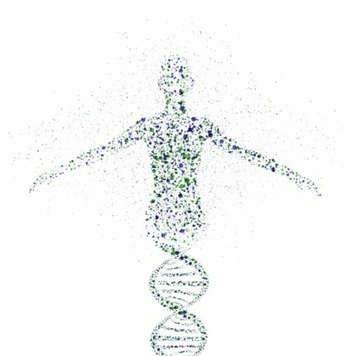 Optimizing Oncology Clinical Trials with Personalized Medicine | healthcare technology | Scoop.it
