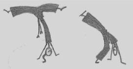 Educação Física Escolar e Capoeira: aula possível : Histórico   Estilos de capoeiragem   Scoop.it