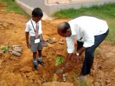 grassroots environmental nurture; a sure means of sustainability | Sustainable Development in India | Scoop.it