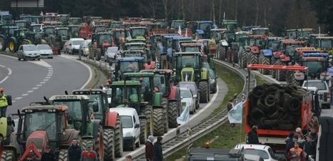 Crise agricole: la FNSEA et la Confédération paysanne s'opposent | Alter Tierra: Agroécologie & Agriculture | Scoop.it