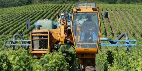 871 tonnes de pesticides dangereux vendues chaque année en Dordogne | Agriculture en Dordogne | Scoop.it