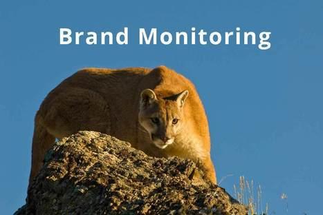 Come monitorare la tua brand reputation online? | Web Revolution | Scoop.it