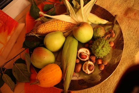 Thanksgiving Centerpiece Ideas | Holidays | Scoop.it