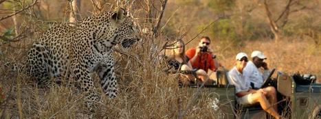 south africa safari tour | Wildlife cruises | Scoop.it