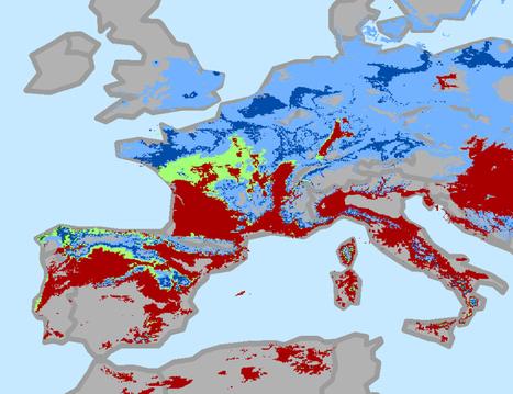 La majorité des surfaces viticoles perdues en 2050 ? | terroir | Scoop.it