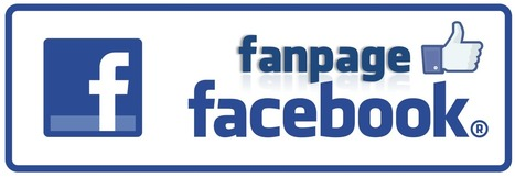 Step By Step To Your 1st 1000 Facebook Fans (Infographic) | Traffic Generation | Scoop.it