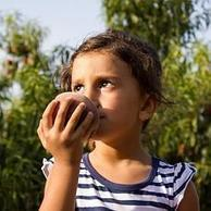 Una alergia alimentaria puede conducir a una alergia respiratoria. | Contenidos SCLAIC | Scoop.it