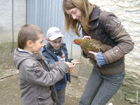 Vacances à la ferme pour les plus jeunes   L'info tourisme en Aveyron   Scoop.it