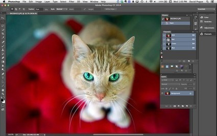 Photoshop 2014: Software Finally Worth Renting | Photo Editing Software and Applications | Scoop.it