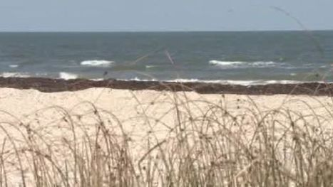 Counties plan to turn Texas coast into tourist destination   Proposed Lone Star Coastal National Recreation Area   Scoop.it