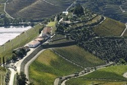 Ode to the Portugal pours | Vitabella Wine Daily Gossip | Scoop.it