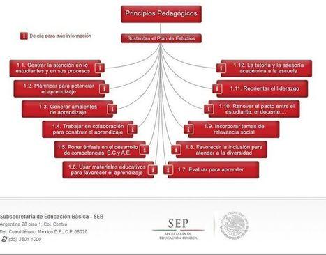 12 Principios Pedagógicos en la #Educación Básica | Sitio | Help and Support everybody around the world | Scoop.it