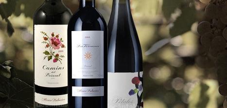 Wines by Álvaro Palacios in Priorat and Bierzo. New vintages 2011 | Lloar Today | Scoop.it