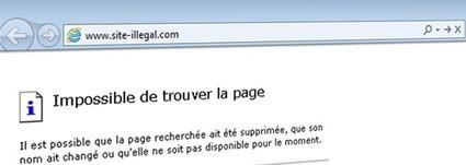 Le gouvernement impose le blocage par DNS aux FAI | Veille de Black Eco | Scoop.it