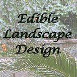 Garden Layouts: Planning Your Edible Landscape Design   Outside Ideas   Scoop.it