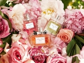 Some Fun Perfume Facts Revealed - Interesting Facts   Products Review   Australia   Scoop.it
