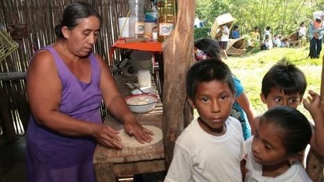 Wikipedia llega a México como una herramienta para las lenguas indígenas - | Lenguaje(s) y su aprendizaje | Scoop.it