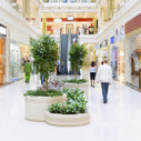 Shopping Malls: A Suburban Renaissance? | Lifestyle and local | Scoop.it