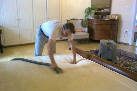 Mattress Cleaning Business: An Increasing Demand in Anti-Allergen Services | Rug\Mattress Cleaning Service | Scoop.it