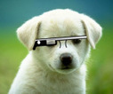 Apple Patent A Reminder That It's Working On Google Glass-Style Wearable Tech, Too | Innovative mobile services | Scoop.it