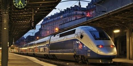 handivalise.fr, pour voyager avec un accompagnateur - Faire Face - Toute l'actualité du handicap moteur | La technologie au service de la santé et du handicap | Scoop.it