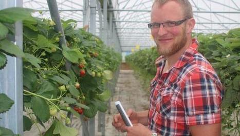 Godewaersvelde : le producteur de fraises Élie Vasseur reçoit la ... - La Voix du Nord | Gastronomie Nord-Pas de Calais | Scoop.it