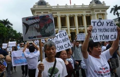 Vietnam: manifestation contre une société accusée d'avoir ravagé la pêche | Biodiversité | Scoop.it